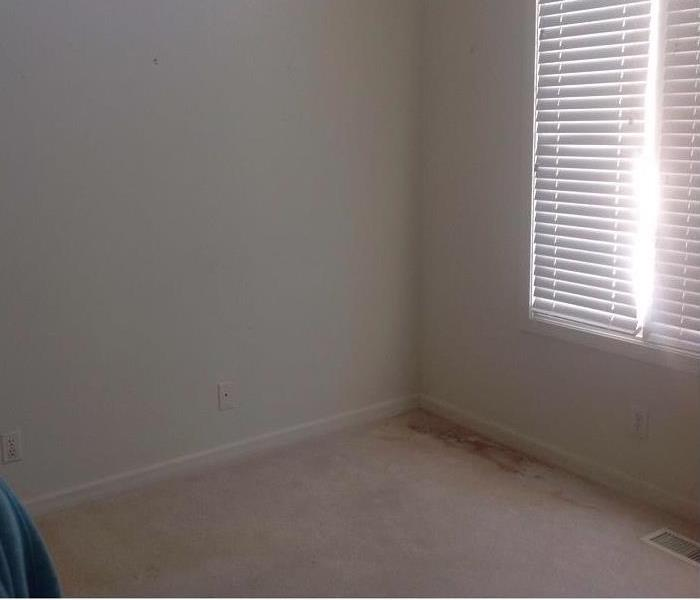 Basement bedroom with water-damaged walls and carpeting