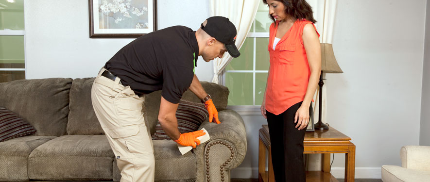 Bellevue, NE carpet upholstery cleaning